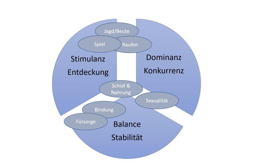 Das Motivsystem im Marketing